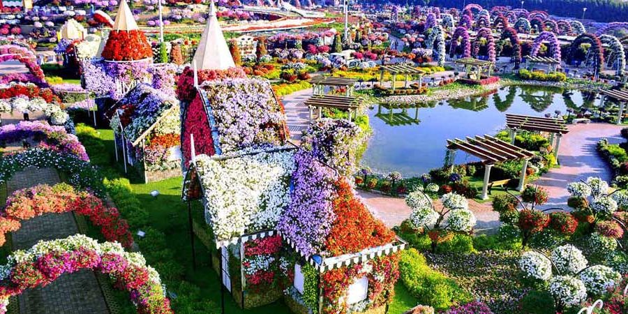 Dubai miracle garden birds eye view