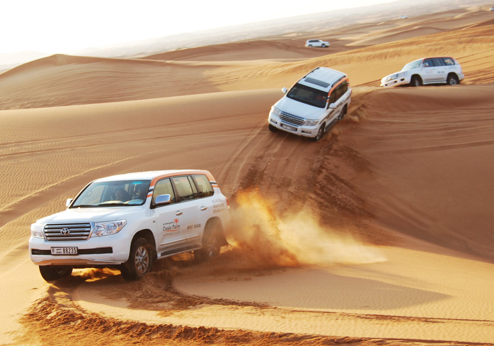 Experience a heart stopping Dune Bashing with Oasis Palm Tourism